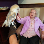 Cedar Lodge resident petting a barn owl