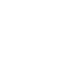 Somerset Pride Logo