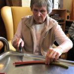 Cedar Lodge resident cutting up rhubarb