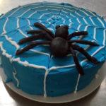 Serenita's showstopper cake