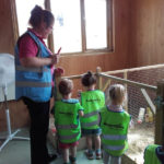 Children looking at the animals in the barn at Casa di Lusso