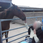 Immacolata House resident meeting a horse at Glenda Spooner Farm