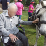 Immacolata House resident meeting the horses at the Forde Abbey RDA Carriage Driving Group