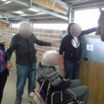Immacolata House residents and activities staff meeting a horse at Glenda Spooner Farm