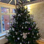 Cedar Lodge care home's Christmas Tree